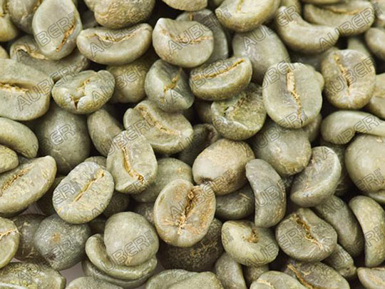 100% Jamaica Blue Mountain Coffee Green Beans, Unroasted